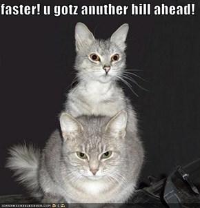 faster! u gotz anuther hill ahead!