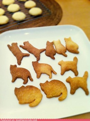 Epicute: Kitty Cookies