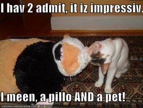 I hav 2 admit, it iz impressiv.  I meen, a pillo AND a pet!