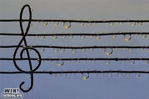 Music in the Rain WIN