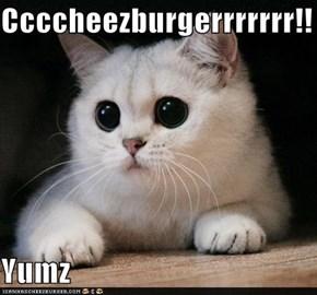 Ccccheezburgerrrrrrr!!  Yumz