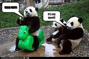Playground Pandas