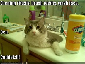 Ebening ritualz: brush teeths, wash face, Den, Cuddelz!!!