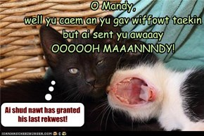 Basement Kitteh will heer Barry Manilow's song Mandy in his hed 4 a long tiem!