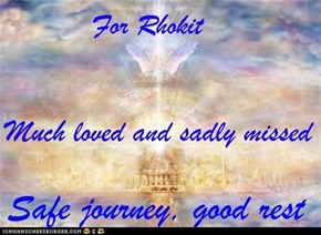 Goodbye Rhokit