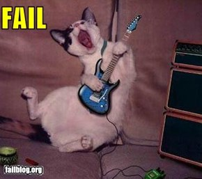 Kitten rocking Guitar hero