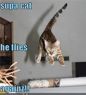 supa cat he flies againz!!