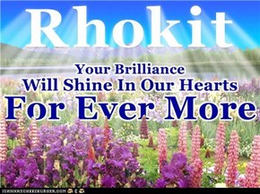Rhokit. Thank You for all the Love and LOLz that you shared with us. You're a One in a Million Speshul Frend that Every Buddy Loved. ... And Always Will ...