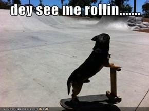 dey see me rollin.......