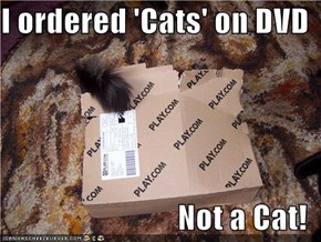 I ordered 'Cats' on DVD  Not a Cat!