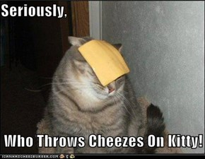 Seriously,   Who Throws Cheezes On Kitty!