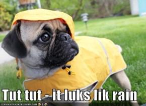 Tut tut - it luks lik rain