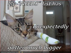 "My ""NEEDS"" list has  unexpectedly gotten much bigger"