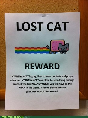 Reward: NYAN