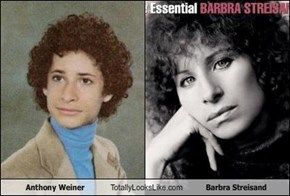 Anthony Weiner Totally Looks Like Barbra Streisand