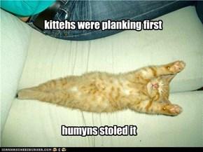 kitteh plank