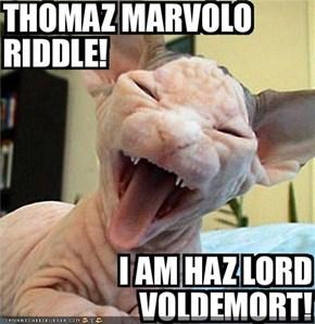 Thomaz Marvolo Riddle!