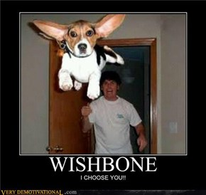 Classic: WISHBONE