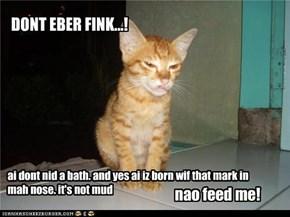 DONT EBER FINK...!