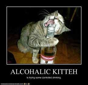 ALCOHALIC KITTEH