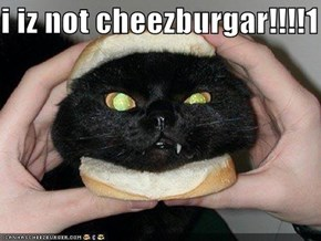 i iz not cheezburgar!!!!1