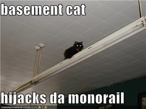 basement cat  hijacks da monorail