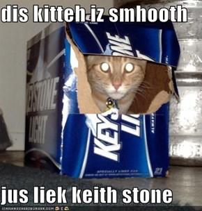 dis kitteh iz smhooth  jus liek keith stone