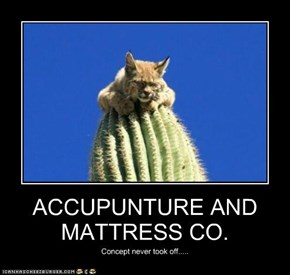 ACCUPUNTURE AND MATTRESS CO.