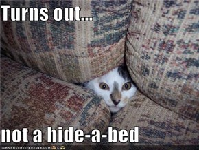 Turns out...  not a hide-a-bed