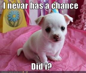 I nevar has a chance  Did i?