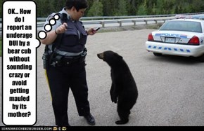 Un-bear-ably Illegal