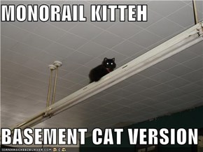 MONORAIL KITTEH  BASEMENT CAT VERSION
