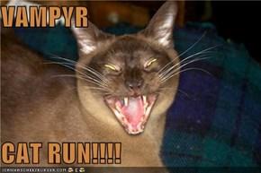 VAMPYR  CAT RUN!!!!