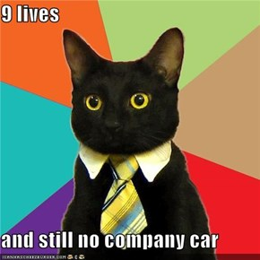 9 lives  and still no company car