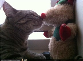 KiKi Kitten Kissing Teddy Bear