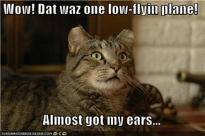 Wow! Dat waz one low-flyin plane!    Almost got my ears...