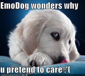 EmoDog wonders why  u pretend to care :'(