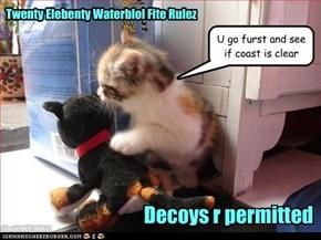 Twenty Elebenty Waterblol Fite Rulez