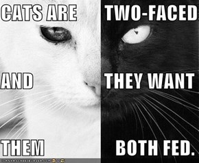 CATS ARE TWO-FACED