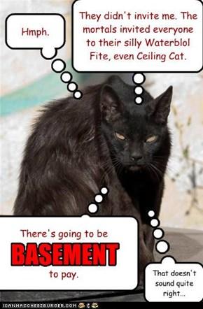 Basement Cat Shut-Out