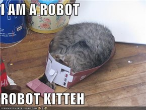 I AM A ROBOT  ROBOT KITTEH