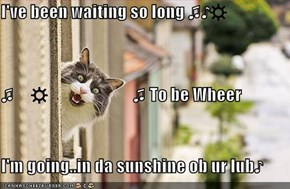 I've been waiting so long ♫♪☼ ♫     ☼                         ♫ To be Wheer I'm going..in da sunshine ob ur lub♪