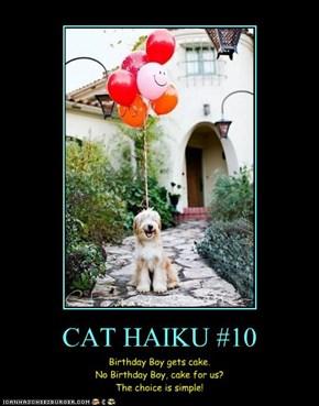 CAT HAIKU #10
