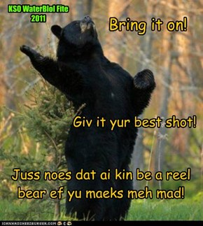 Bear it! KSO WaterBlol Fite