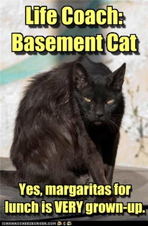 Life Coach: Basement Cat