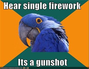 Hear single firework  Its a gunshot