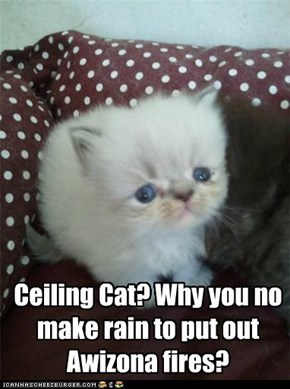 Ceiling Cat? Why you no make rain to put out Awizona fires?