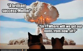 """A brilliant success, Muffin!"""