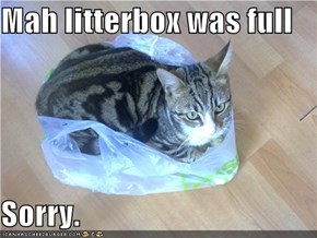 Mah litterbox was full  Sorry.