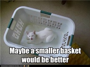 Maybe a smaller basket would be better